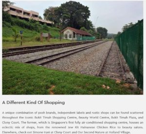 leedon-green-5 Reasons To Live The Bukit Timah Life