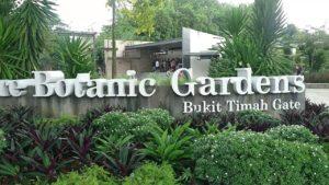 leedon-green-condo-singapore-botanic-gardens